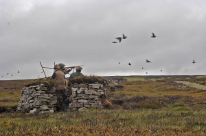 Grouse shooting in the North Pennines.